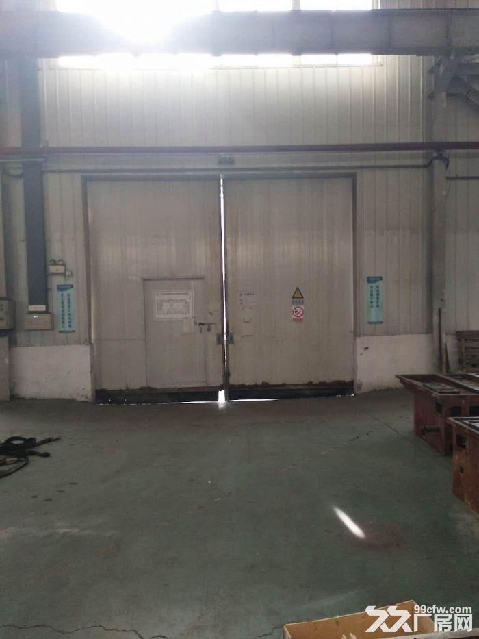 高8米厂房3000平米适合仓储运动场馆等企业-图(3)