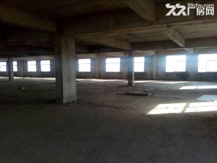 泰安岱岳区青春创业开发区希望路8号3500平米厂房出租-图(1)