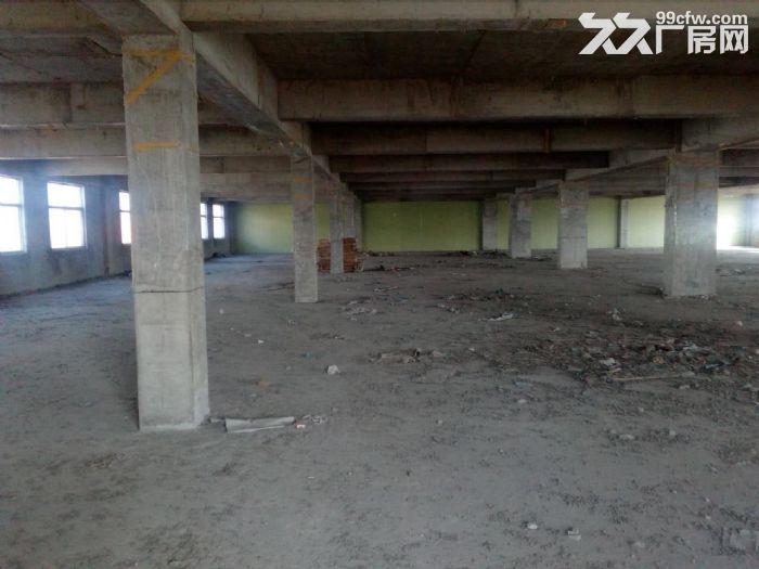 泰安岱岳区青春创业开发区希望路8号3500平米厂房出租-图(2)