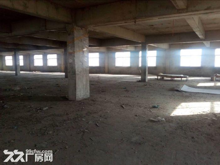 泰安岱岳区青春创业开发区希望路8号3500平米厂房出租-图(3)