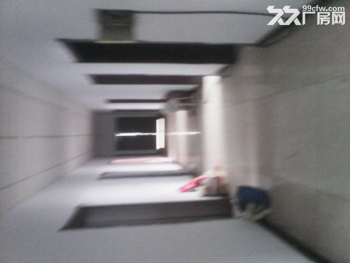 葫芦岛市建昌新开岭场地出租-图(7)