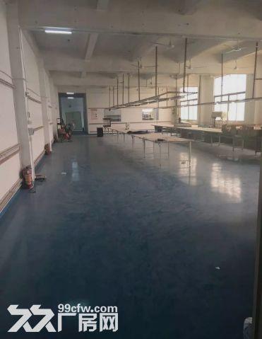 小榄永宁新出独院2500平方带装修厂房-图(3)