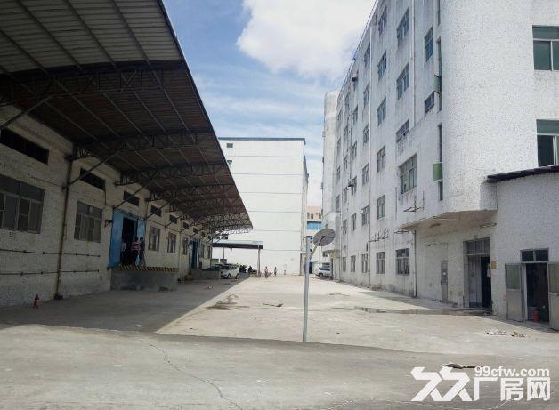 小榄九州基新出带卸货平台6米高独栋钢构厂房2600平方-图(1)