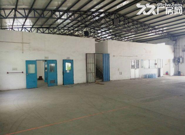 小榄九州基新出带卸货平台6米高独栋钢构厂房2600平方-图(4)
