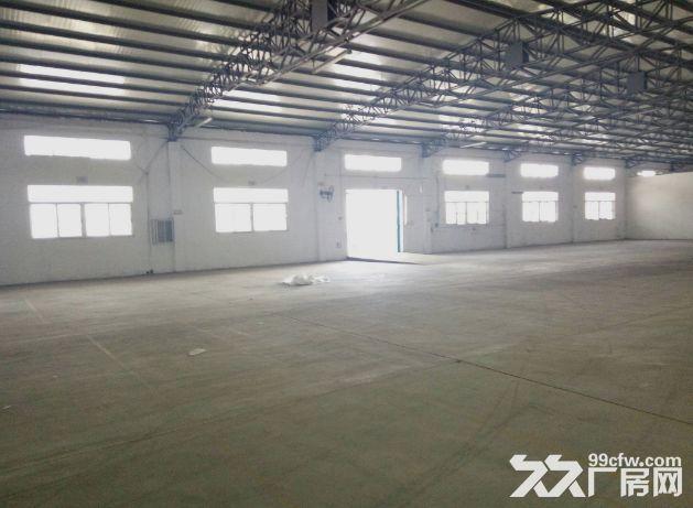 小榄九州基新出带卸货平台6米高独栋钢构厂房2600平方-图(3)