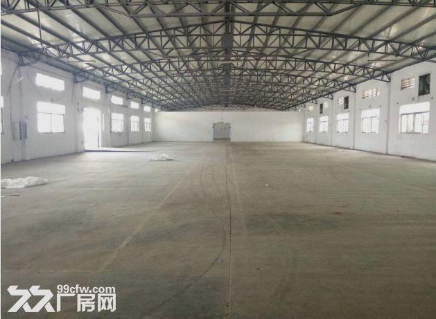 小榄九州基新出带卸货平台6米高独栋钢构厂房2600平方-图(6)