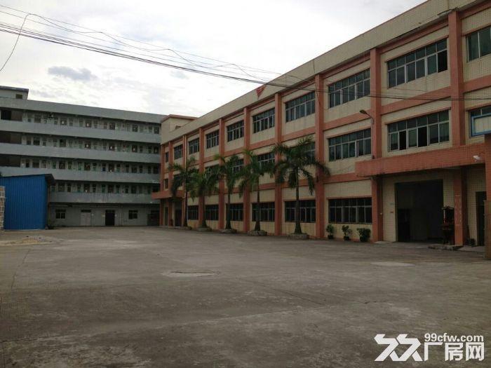 平布大道独院标准一楼3000平米厂房招租-图(3)