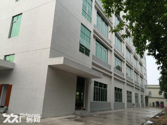 新华工业区全新化妆品厂房8500平米招租-图(3)
