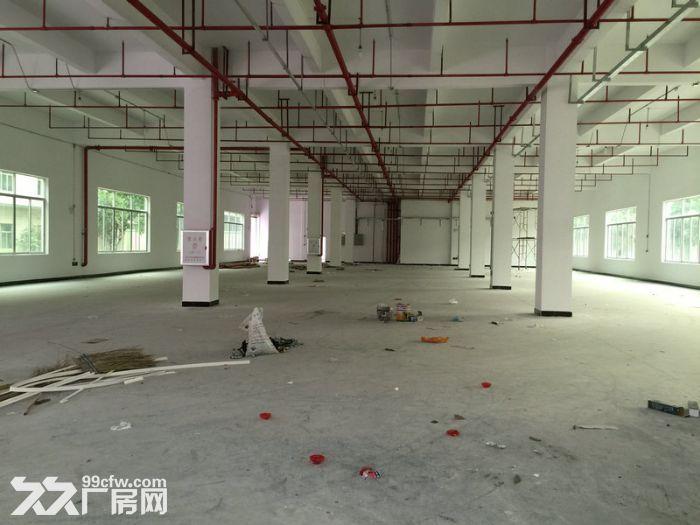 新华工业区全新化妆品厂房8500平米招租-图(2)