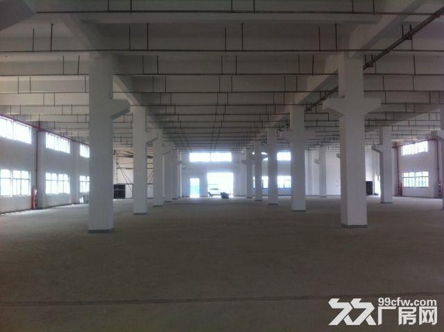 新区好地段有一幢7000平米多层好厂房出租-图(4)