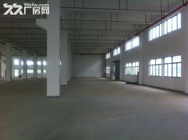 新区好地段有一幢7000平米多层好厂房出租-图(1)