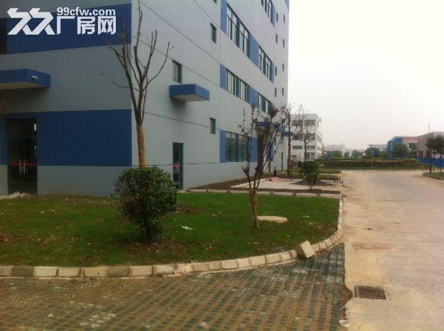 新区好地段有一幢7000平米多层好厂房出租-图(2)