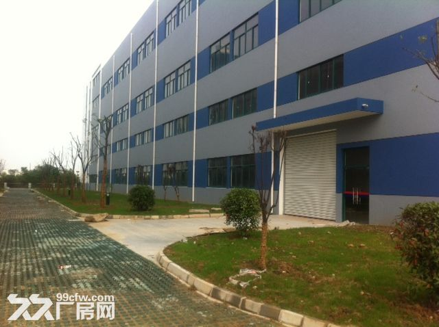 新区好地段有一幢7000平米多层好厂房出租-图(3)