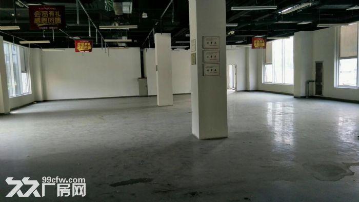 亦庄东区无地下一层独立物流门户型方正408平出租-图(3)