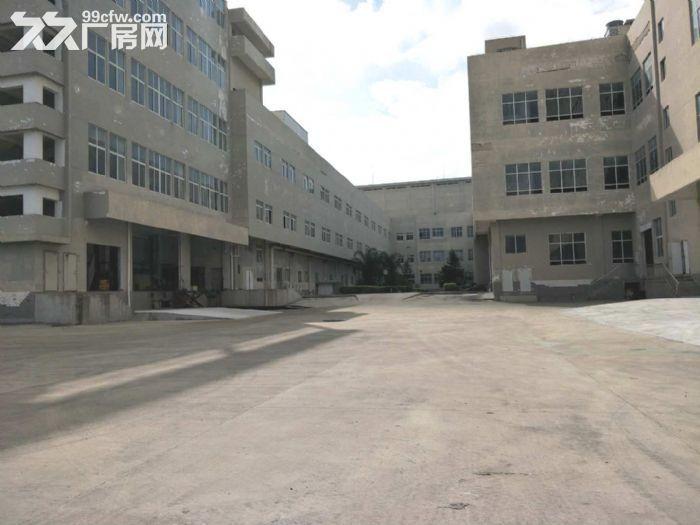 出租亭江仓库−冷库及常温库-图(3)