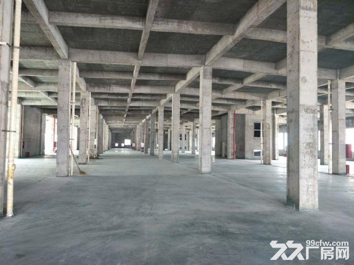 出租亭江仓库−冷库及常温库-图(4)