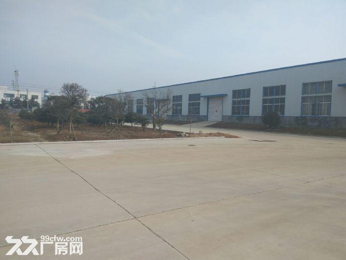 独门独院交通便利标准钢结构仓库最低价出租-图(4)