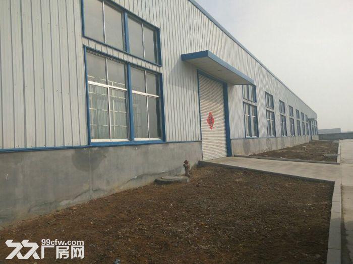 独门独院交通便利标准钢结构仓库最低价出租-图(8)