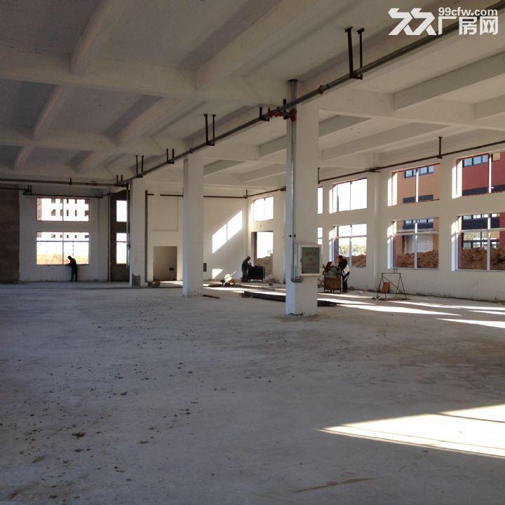 [独门独院]锦联梦工厂工业园。-图(4)