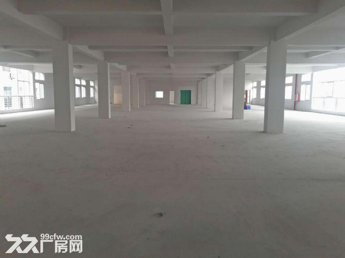 塘厦科苑城楼上厂房1500平(租14元)-图(4)