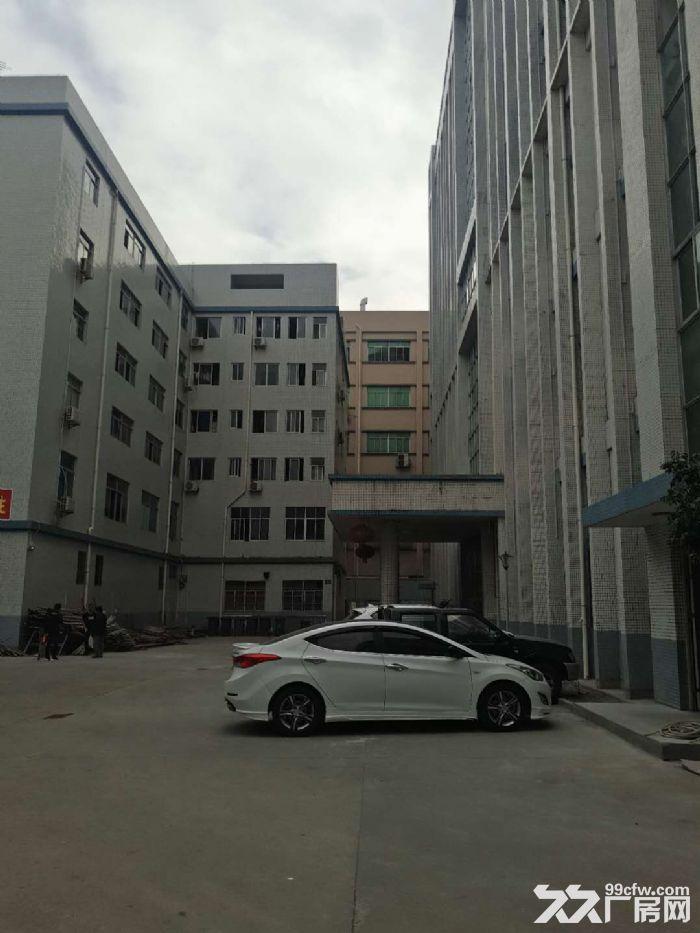 塘厦科苑城楼上厂房1500平(租14元)-图(3)