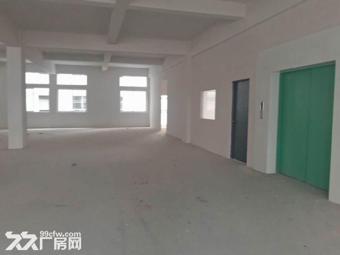 塘厦科苑城楼上厂房1500平(租14元)-图(5)