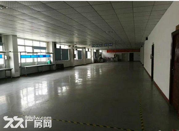 同茂工业区新出三楼520平米、通风整洁、带装修-图(3)