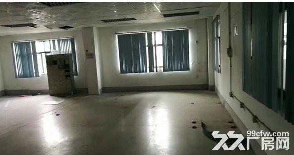 同茂工业区新出三楼520平米、通风整洁、带装修-图(4)