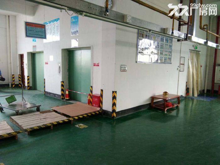 江门鹤山共和厂房出租-图(6)