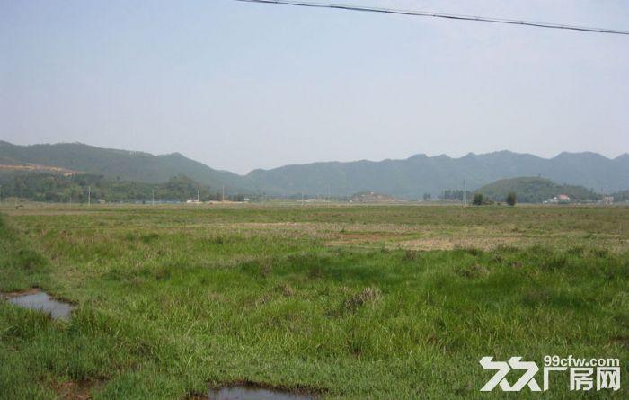 新郑33亩土地,国有产权50年,先到先得-图(3)