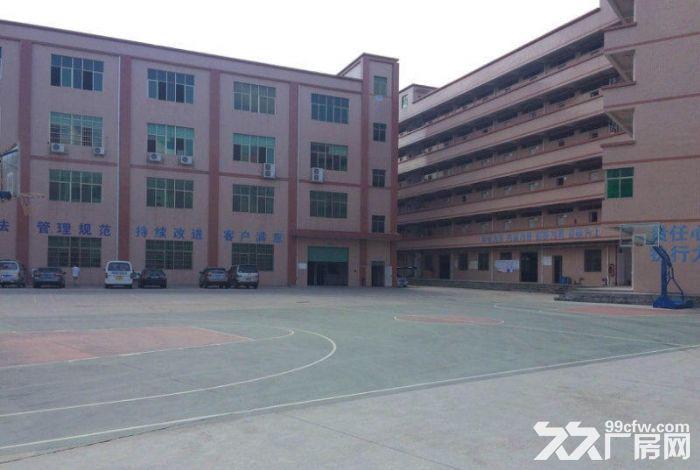 新圩高速出口附近独门独院10500平米厂房出租-图(3)