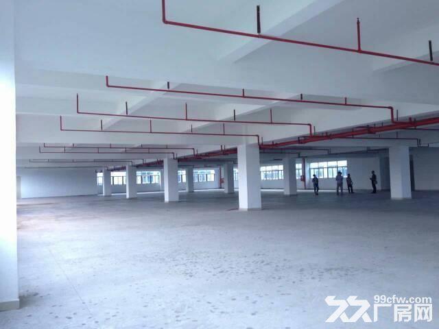 新圩高速出口附近独门独院10500平米厂房出租-图(4)