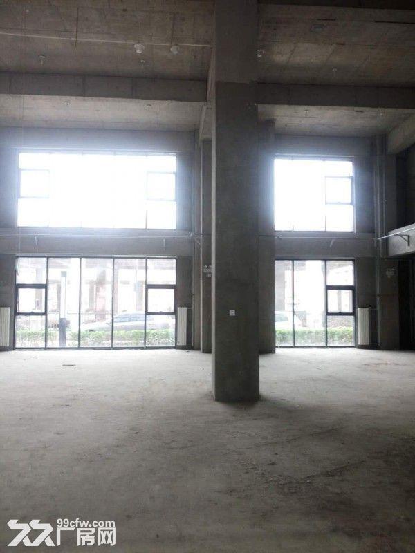 企业独栋1500平米一层高6米无地下-图(3)