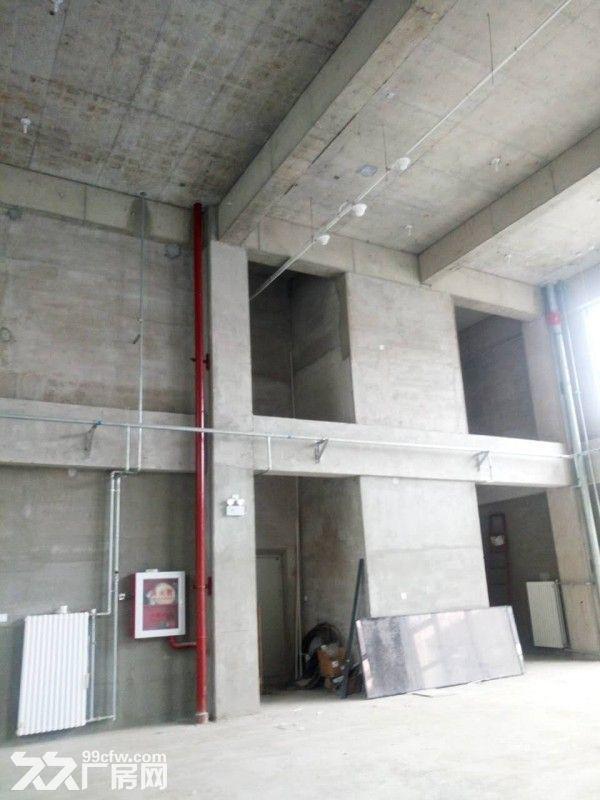 企业独栋1500平米一层高6米无地下-图(5)