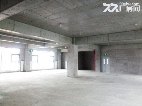 企业独栋1500平米一层高6米无地下-图(6)