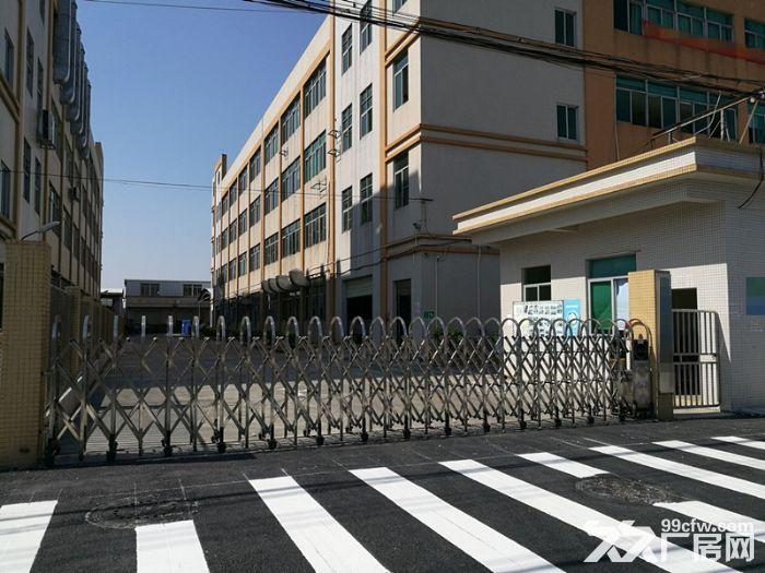 大路边独门独院有房产证东涌8000方标准厂-图(1)