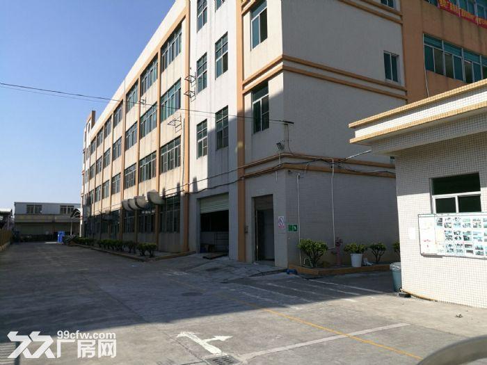 大路边独门独院有房产证东涌8000方标准厂-图(2)