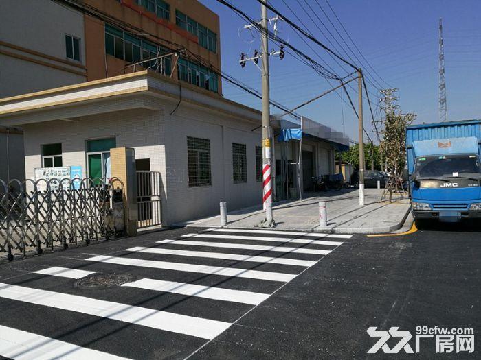 大路边独门独院有房产证东涌8000方标准厂-图(3)