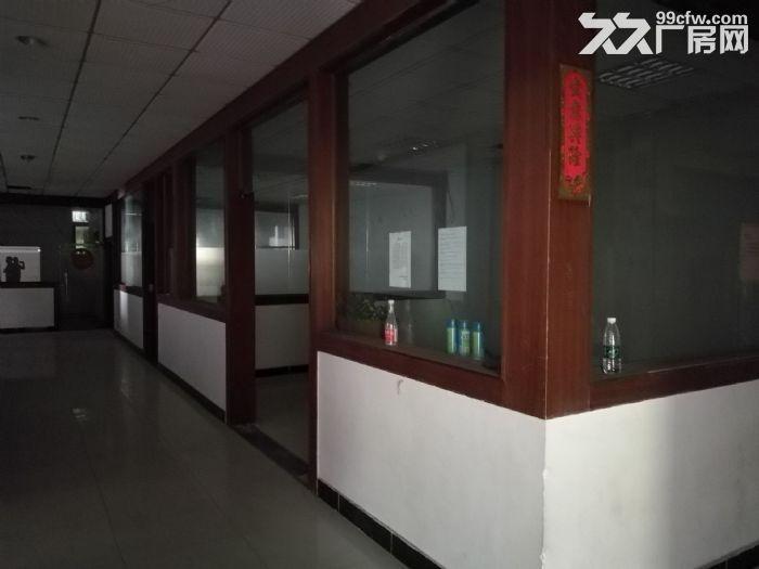 大路边独门独院有房产证东涌8000方标准厂-图(4)