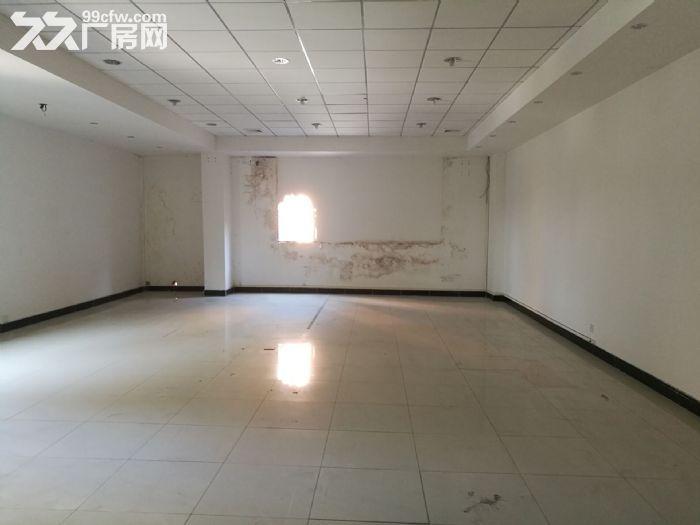 大路边独门独院有房产证东涌8000方标准厂-图(5)
