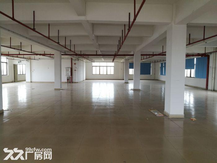 大路边独门独院有房产证东涌8000方标准厂-图(6)