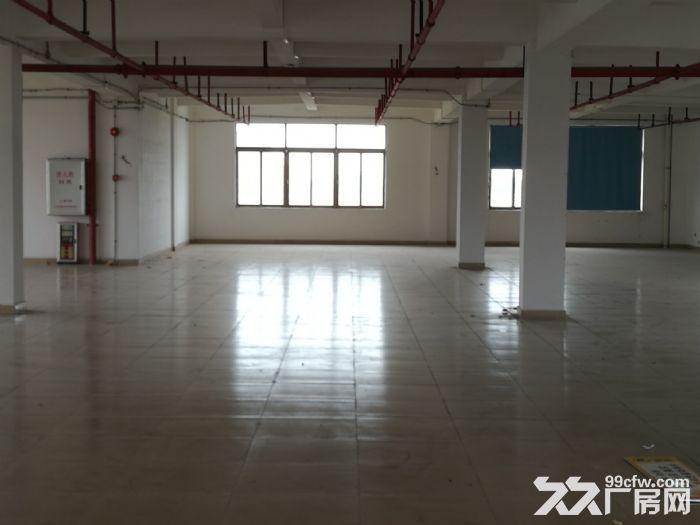大路边独门独院有房产证东涌8000方标准厂-图(7)