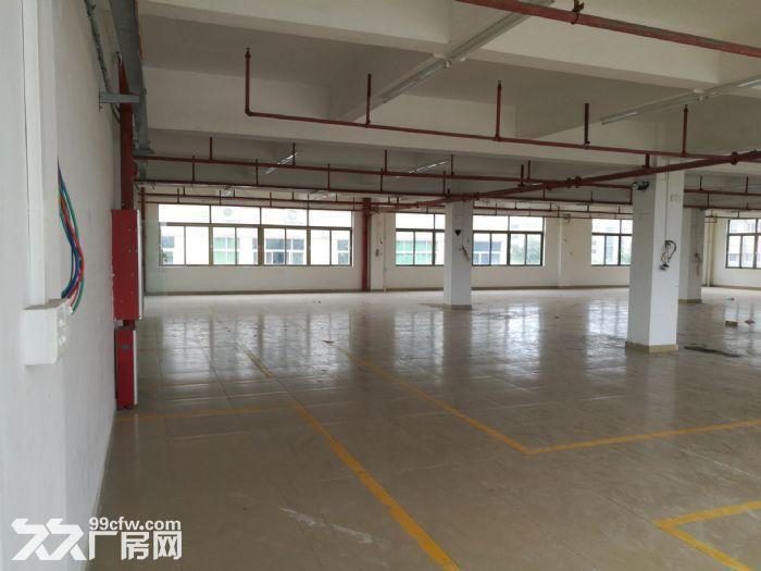 大路边独门独院有房产证东涌8000方标准厂-图(8)