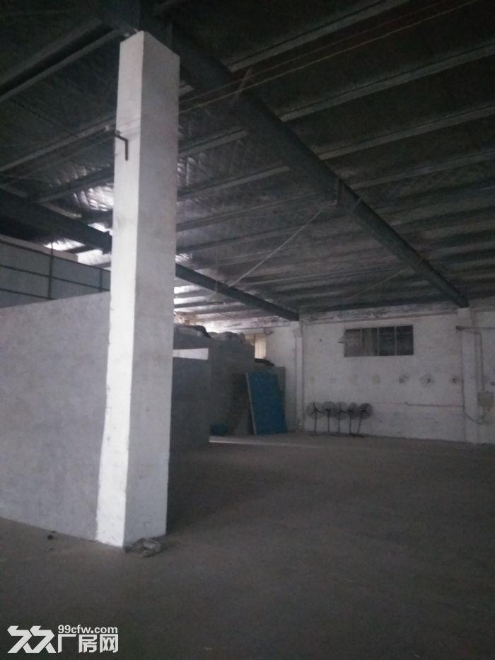 新区梅村1600平独门独院仓库,层高够价格低,抢!-图(2)