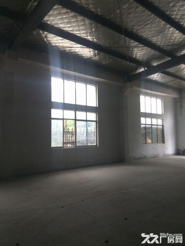 新区梅村1600平独门独院仓库,层高够价格低,抢!-图(4)