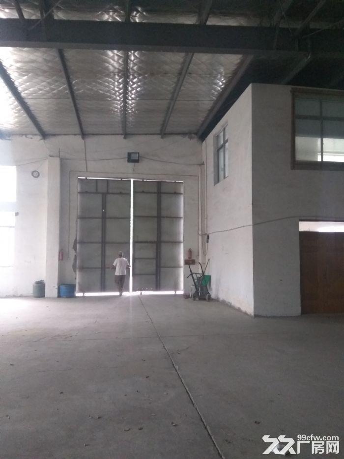 新区梅村1600平独门独院仓库,层高够价格低,抢!-图(6)