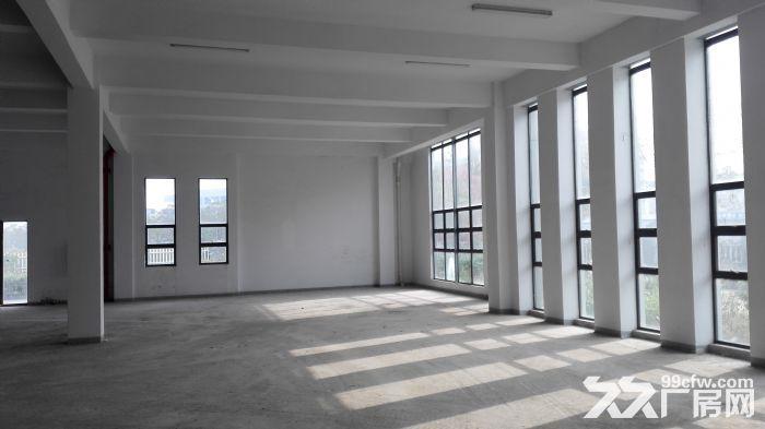 V出售湖熟两证齐全占地26亩8000平单层厂房-图(3)