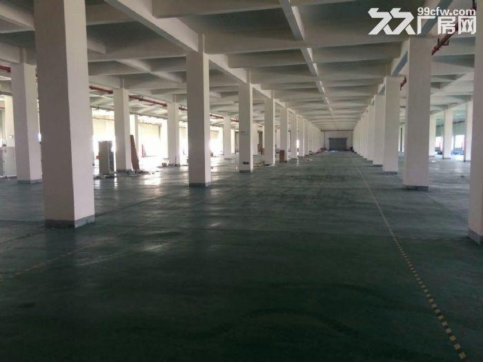 V出售湖熟两证齐全占地26亩8000平单层厂房-图(4)
