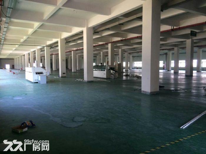 V出售湖熟两证齐全占地26亩8000平单层厂房-图(5)