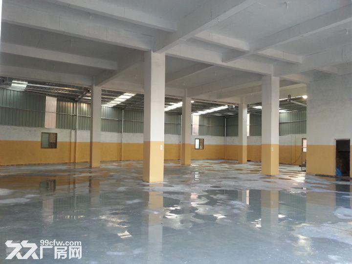 海沧东孚独院框架通用厂房出租-图(6)